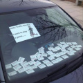 Traffic warden little game