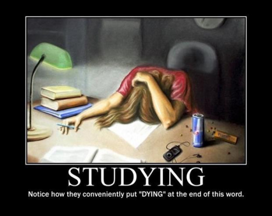 Studying has the word dying in it