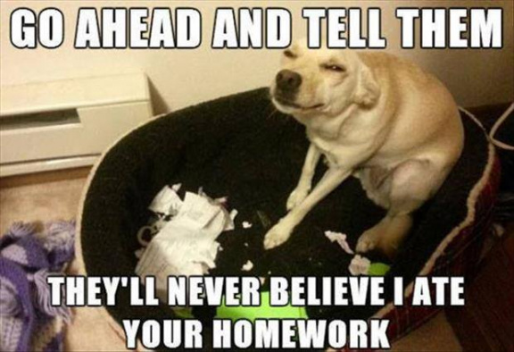 Tell them I ate your homework