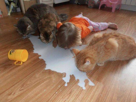 Teaching a human how to drink milk