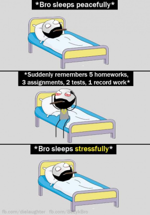 Bro sleeps stressfully