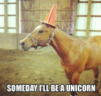 I'll be a unicorn