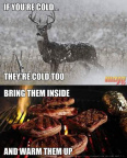 The deer is cold
