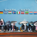 The sharks from NATO