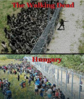 The Walking Dead vs Hungary border