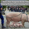 Hungarian border police