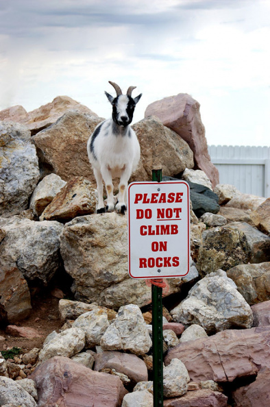 Do not climb on rocks