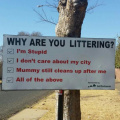 Why are you littering? (city version)