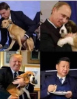 Dogs and presidents