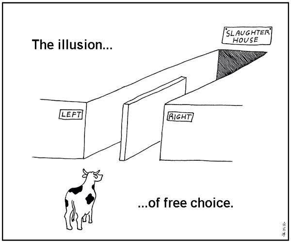 illusion_of_free_choice.jpg