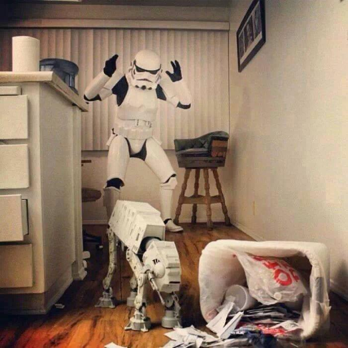 Stormtrooper dog