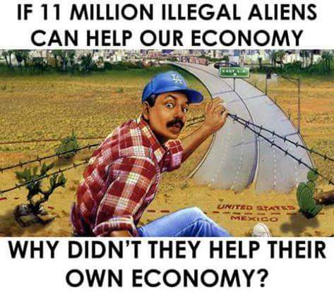 Can illegal aliens help our economy?