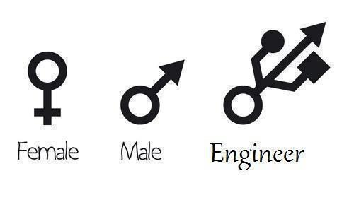Female vs male vs engineer