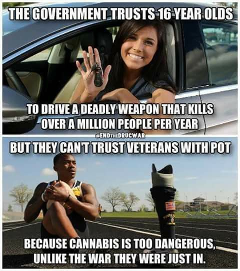 cannabis_too_dangerous.jpg